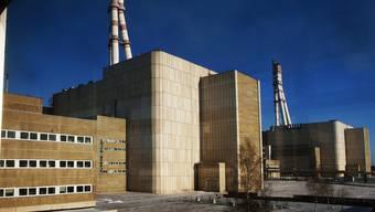 Das stillgelegte Atomkraftwerk Ignalina in Litauen (Archiv)