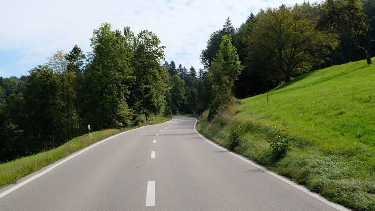 135 km/h statt 80 km/h: In vollem Garacho fuhr der Töfffahrer aufs Cholholz in Birmensdorf zu.