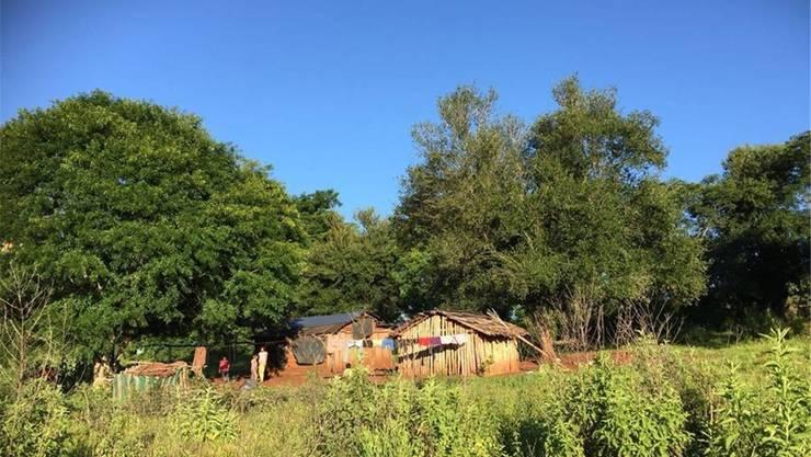 Eine Siedlung im Wald. Dieser gehört dank Sagittaria heute wieder den Bewohnern.