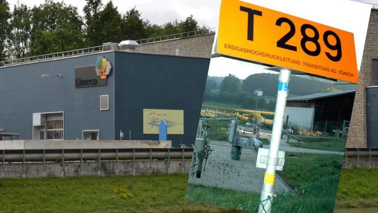 Die Limeco mit ihrer Abwasserreinigungsanlage (ARA) in Dietikon könnte zum ersten industriellen Gasproduzenten der Schweiz werden.