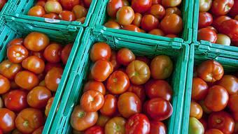 Obst und Gemüse braucht viel Wasser bei diesen Temperaturen