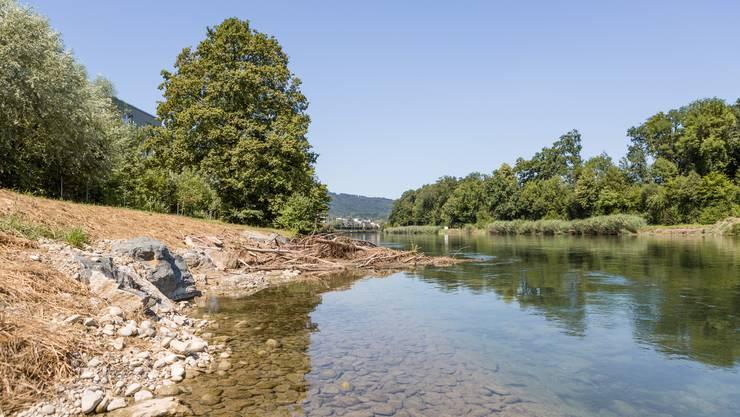 Hinter dieser neuen, naturnah gestalteten Bucht an der Limmat steckt viel Arbeit. 100 Tonnen Stein wurden dafür aufgewendet.