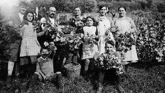Wümmet in den Döttinger Rebbergen vor 80 Jahren. Die ganze Familie packt an. ZVG