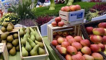 In Früchten wurden erhöhte Perchlorat-Werte gefunden (Symbolbild)