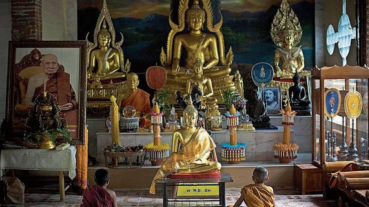 Novizen meditieren im Tempel des goldenen Pferdes. Bild: Getty