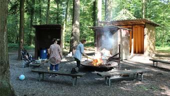 Die beiden kleinen Holzhütten sind schon über 20 Jahre alt – aber genauso illegal wie die grössere, die erst 2017 erstellt wurde. Alle müssen über kurz oder lang weg.