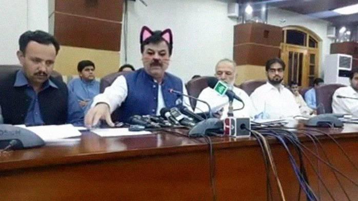 Fast schon gruselig: Eine Katze im Kabinett.