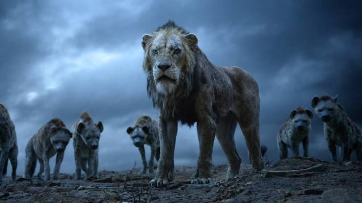 Täuschend echt: Scar und die Hyänen.