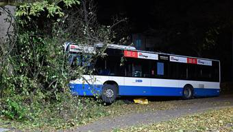 Ein VBZ-Bus kollidierte gestern aus unbekannten Gründen mit einem Baum. (Symbolbild)