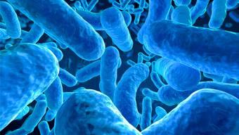 Was ist schon der Mensch, kommen doch auf eine menschliche Zelle rund zehn fremde Zellen. istockphoto