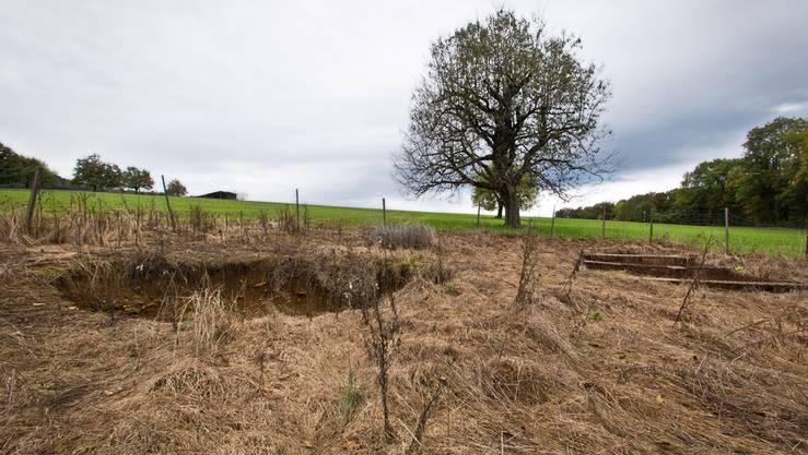 Das Gebiet mit den beiden Erdlöchern in Hellikon gehört der Umweltorganisation Pro Natura Aargau.