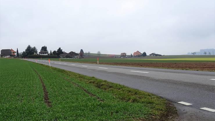 Hinter dem Reusserhof soll ein Schweinemaststall gebaut werden.