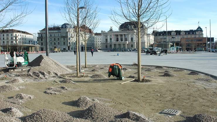 Baumgruppen an den Rändern des Platzes werden Schatten spenden.