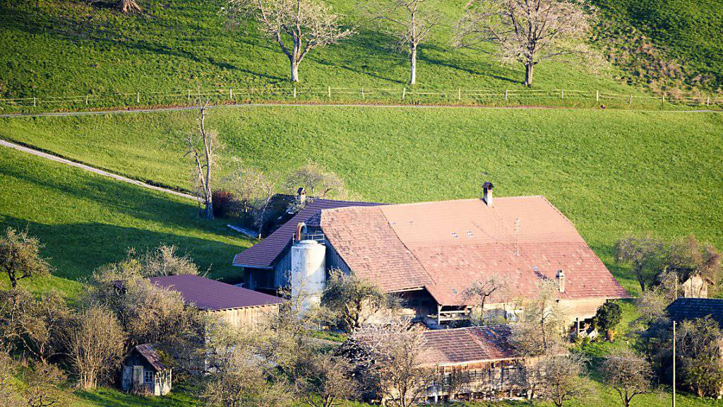 Verkaufen Bauern land- und forstwirtschaftliche Grundstücke, sollen sie dafür nicht von der Bundessteuer befreit werden. Dieser Meinung ist der Ständerat. (Symbolbild)