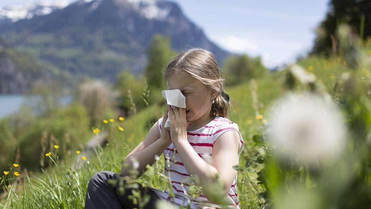 Wer als Kind mit vielen Allergien zu kämpfen hat, ist im Erwachsenenalter anfälliger für chronisch entzündliche Erkrankungen, aber auch für psychische Beschwerden. (Symbolbild)