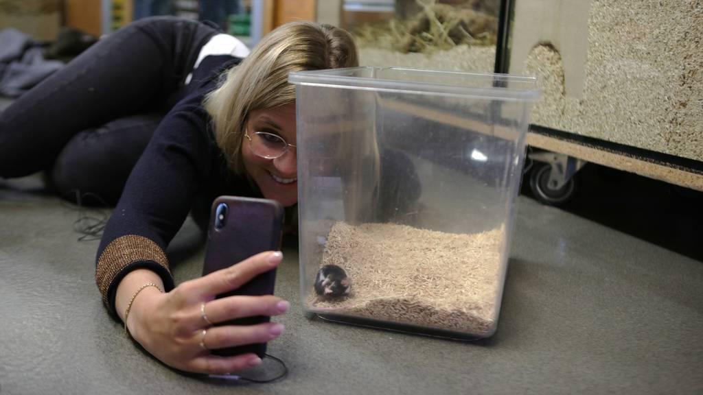 Deborah Zaugg hat ihre Angst vor Mäusen überwunden – na ja, fast