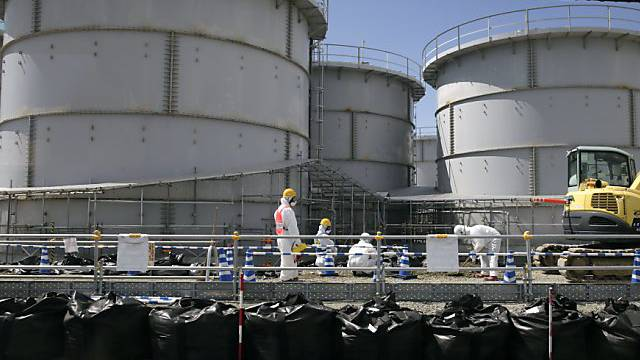 Spuren aus den Reaktoren von Fukushima vor Kanada entdeckt (Archiv)
