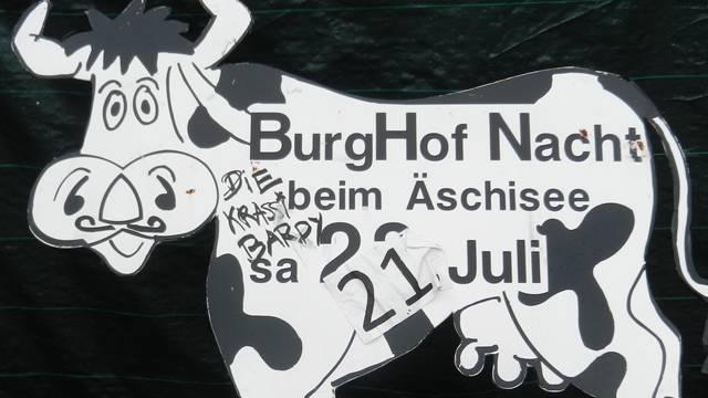 Werbeträger für die Burghofnacht, die Kühe am Strassenrand.