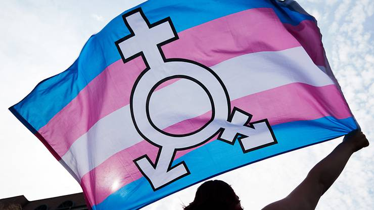 Eine Person an einer Kundgebung für die Rechte von Transmenschen. Der Bundesrat will deren Situation verbessern: Transmenschen und Menschen mit einer Geschlechtsvariante sollen das Geschlecht auf dem Papier einfacher ändern können. (Symbolbild)
