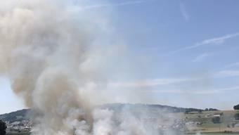 Rund sechs Hektaren eines Kornfelds in Mauensee gerieten am Donnerstagnachmittag in Brand.