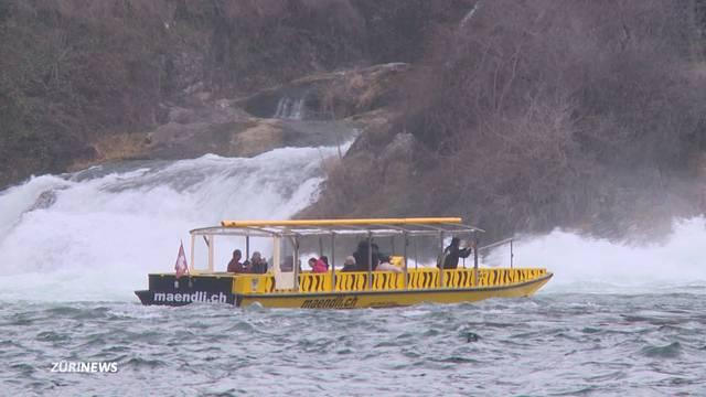 Reinfall: Bootstour am Rheinfall kostet plötzlich doppelt so viel