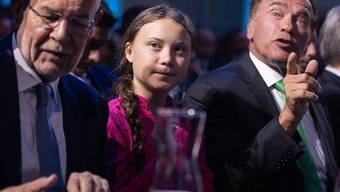 Gemeinsam für den Schutz des Klimas: Österreichs Bundespräsident Alexander Van der Bellen, die 16-jährige schwedische Klimaaktivistin Greta Thunberg und Arnold Schwarzenegger in Wien.