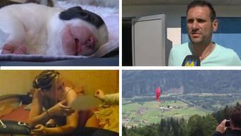 Voller Emotionen: Diese Videos liefern die geballte Ladung.