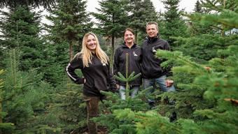 «Schönheit liegt im Auge des Betrachters»: Auch wenn er nicht dem gängigen Schönheitsideal entspricht, darf bei ihnen jeder Baum gross werden. Für Vanessa, Eveline und Heinz Feldmann (von links) ist kein Christbaum schöner als der andere.