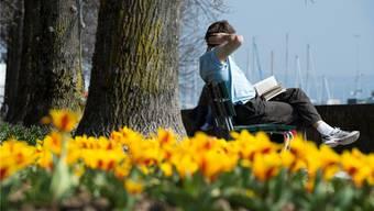 Mit den steigenden Temperaturen  steht dem Frühlingsanfang nichts mehr im Weg.