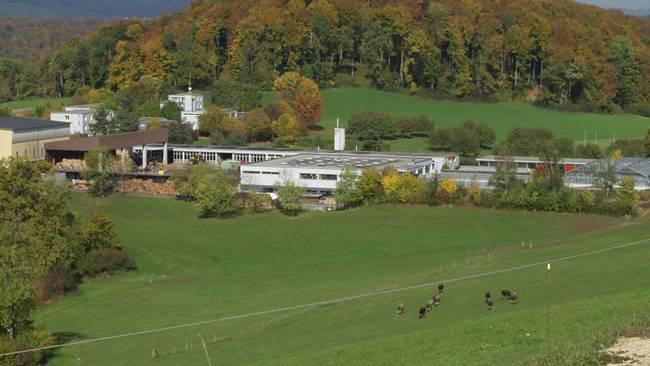 Arxhof in Niederdorf