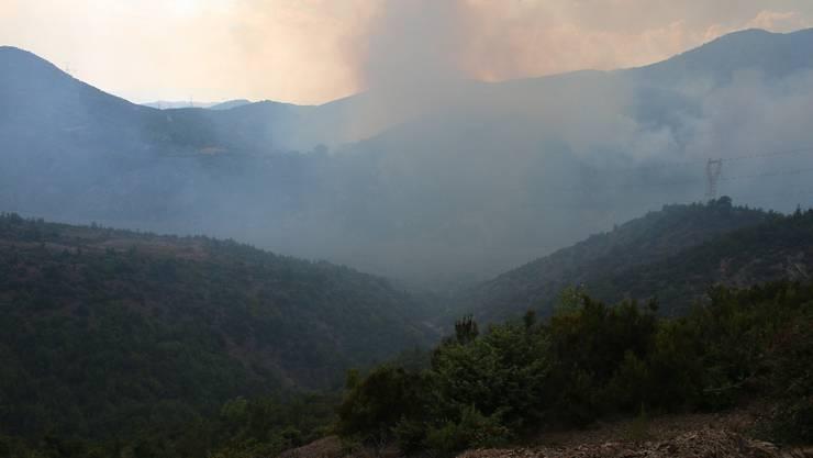 Auf dem Weg von Shkodra nach Koman hat es auf dem zweiten Streckenabschnitt nicht viele Häuser - zum Glück, sonst wäre dieser  Waldbrand noch viel bedrohlicher.