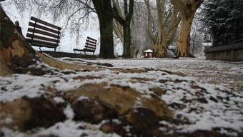 Da wo im Sommer die Hafebar lockt, lag am 9. Januar nur gerade ein «Schümli» Schnee – ein Bild, das über weite Strecken des Monats symptomatisch war.