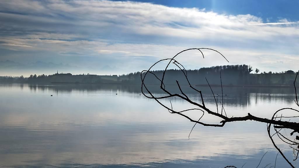 Studie identifiziert unerwartete Klimawandel-Effekte in Seen