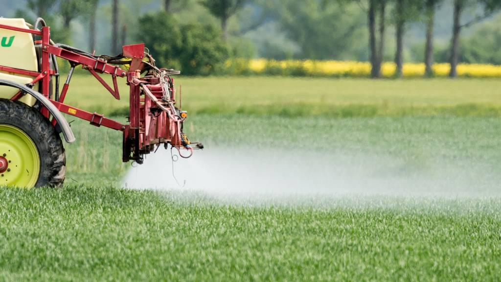 Trinkwasserinitiative: Positive Effekte würden laut Agroscope verpuffen