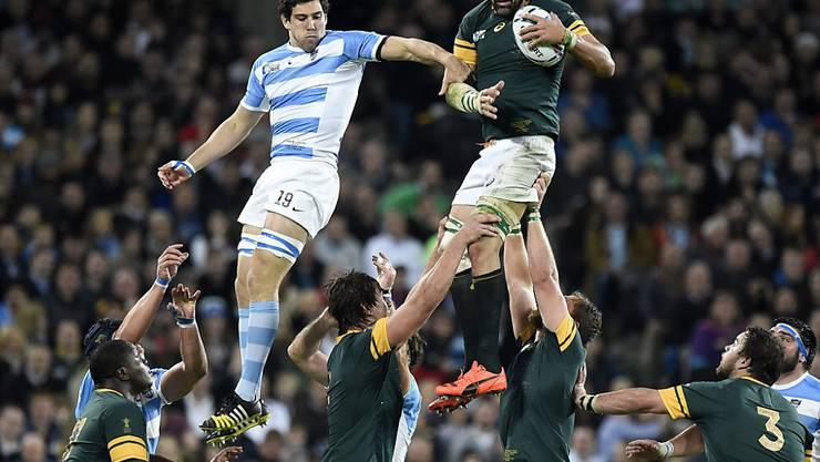 Die Südfrikaner - hier Captain Victor Martfield am Ball - waren den Argentiniern im Spiel um Platz 3 überlegen.