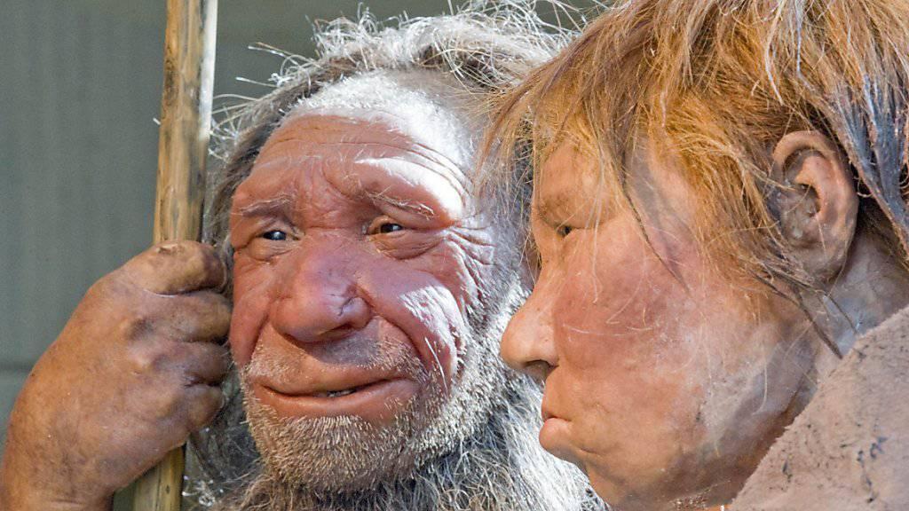 Neandertaler waren Feinmotoriker