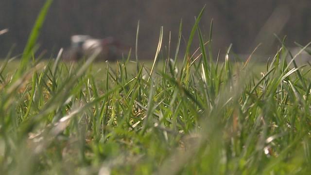 Raumplanung Aargau: Kampf um Grünzone gewonnen