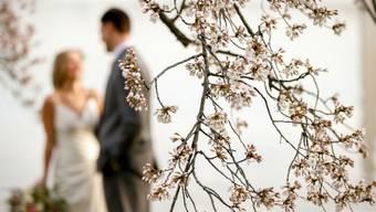 Geschiedene, die wieder heiraten, sollen akzeptiert werden