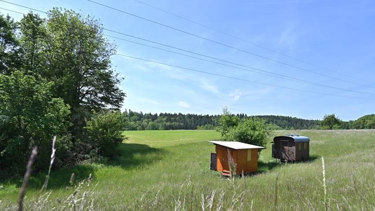 Die zwei Wagen von Felix Schneider auf seinem Land in Erlinsbach. Ob sie dortbleiben dürfen, wird auskommen.