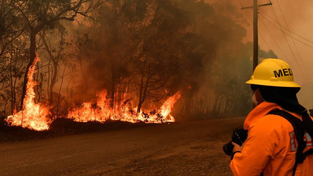 Kein Ende der Buschbrände in Sicht