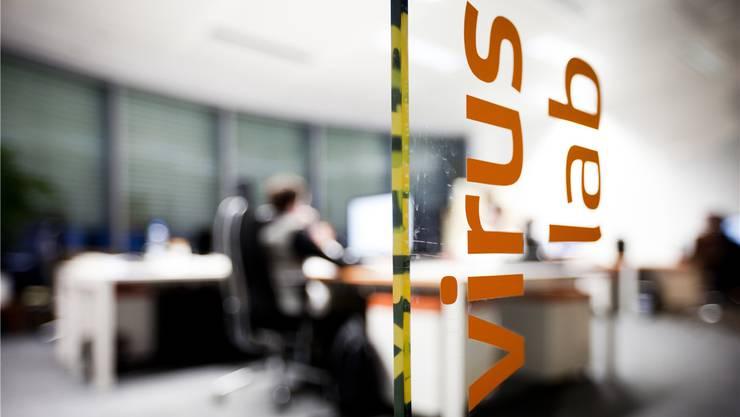 Unter dem Label «Economic Crime Intelligence» bieten immer mehr Privatfirmen Dienste zum Schutz gegen Internetviren an. Fluger/Horazny/KEY