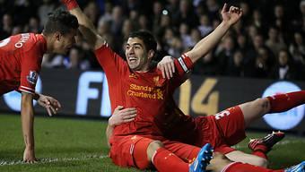 In beneidenswerter Form: Liverpools Goalgetter Luis Suarez