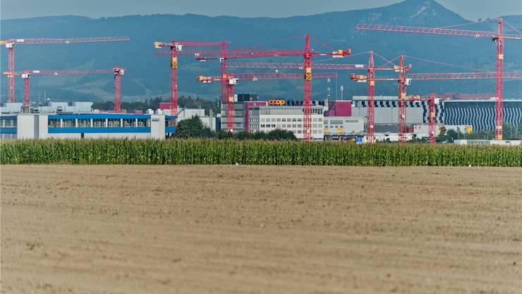 Lohndumping auf der Baustelle des neuen Verteilzentrums von Coop in Schafisheim AG: Coop will den Vorwürfen nachgehen.Emanuel Freudiger