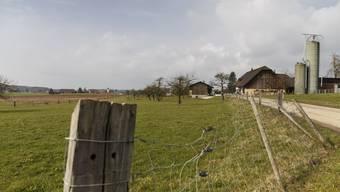 Der Gemeinderat bevorzugt die Parzelle nördlich der Inkwilerstrasse für den Aktiv- und Bewegungsstall.