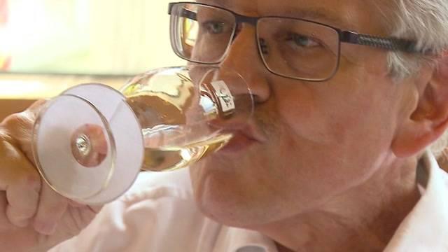 Die Suche nach dem Aargauer Staatswein 2016