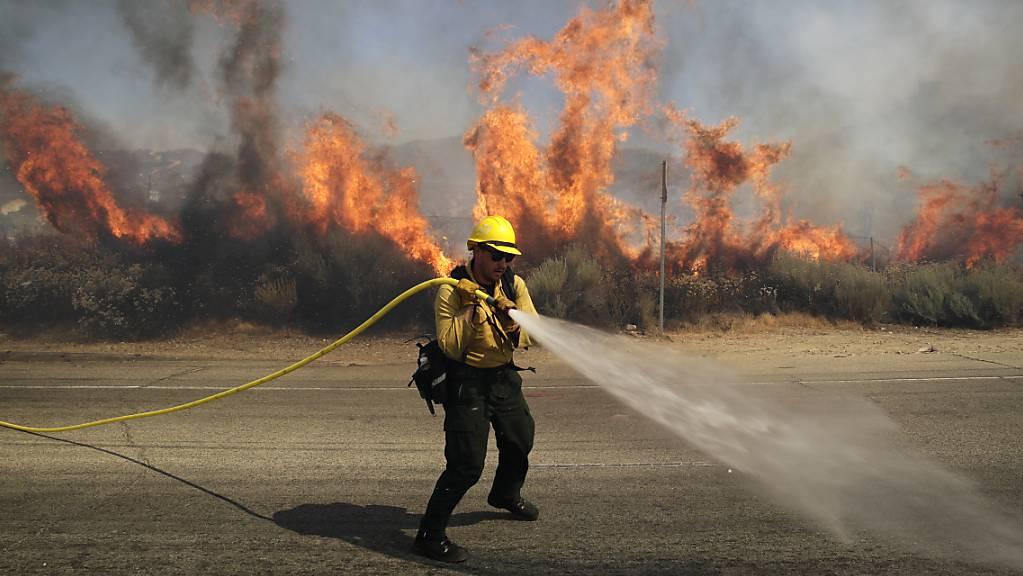 dpatopbilder - Ein Feuerwehrmann ist bei einem Waldbrand im US-Bundesstaat Kalifornien im Einsatz. Foto: Marcio Jose Sanchez/AP/dpa