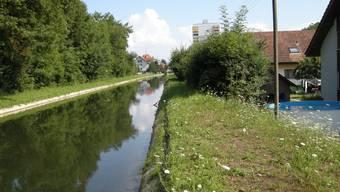 Im Vordergrund rechts der bereits sanierte Teil des Dammes auf Luterbacher Boden. Von der Hecke an werden weitere 40 Meter saniert. Im Hintergrund das Hochhaus von Derendingen.