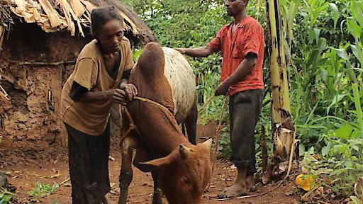 Mehr Geld für weltweite Entwicklungshilfe