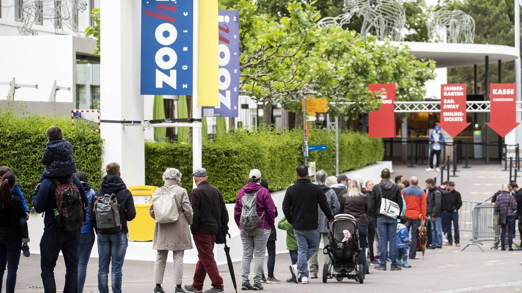 Zürcher Regierungsrat will Zoo mit 7,8 Millionen Franken unterstützen