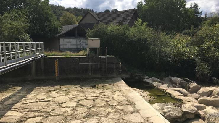 Sissle Eiken, August 2018: Es herrscht absolute Trockenheit.